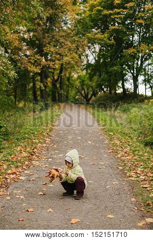 Little girl in the autumn park.sitting in pathway