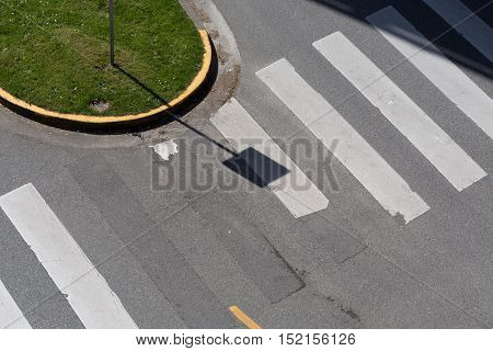Zebra crossing and green lawn top view