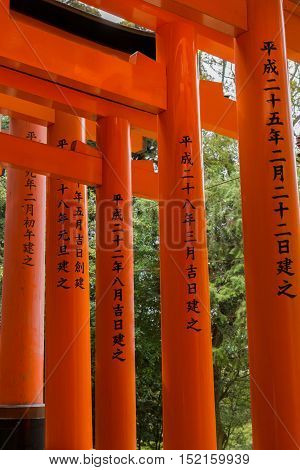 Kyoto Japan - September 17 2016: Thousands of Torii create path up the hill at Fushimi Inari Taisha Shinto Shrine. Closeup of some vermilion pillars. Torii with inscriptions on the pillars.