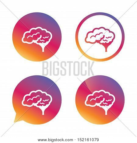 Brain with cerebellum sign icon. Human intelligent smart mind. Gradient buttons with flat icon. Speech bubble sign. Vector