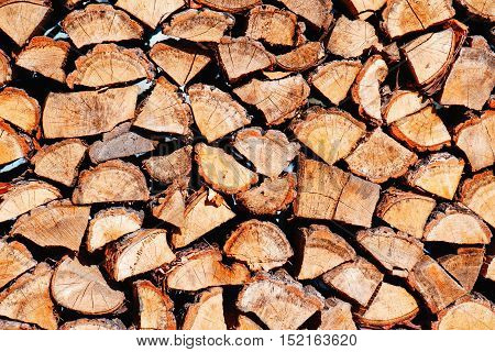 Woodpile from dry oak logs. Close up.