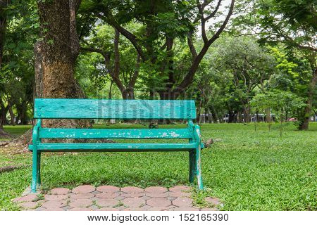 Wooden park bench under the trees .