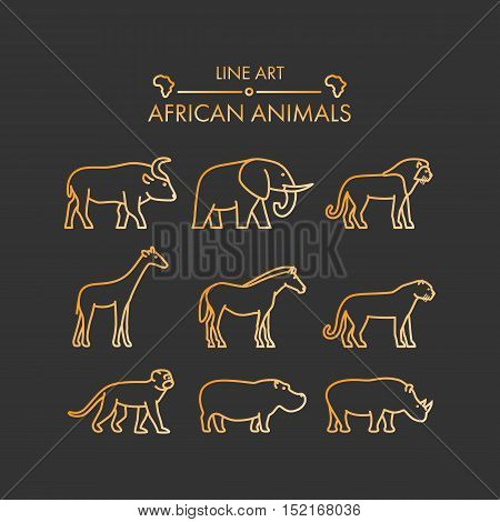 Vector line african animals icon set. Linear figure lion cheetah leopard elephant buffalo and giraffe.