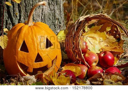Halloween pumpkin and a basket with apples on the background of grass and trees.