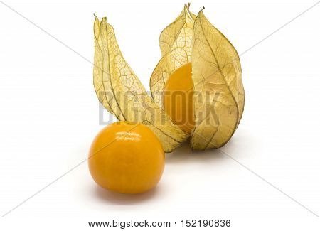 Physalis fruits on the white isolated background
