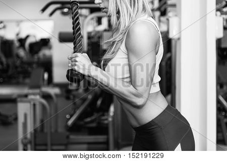 Woman Doing Triceps Exercise