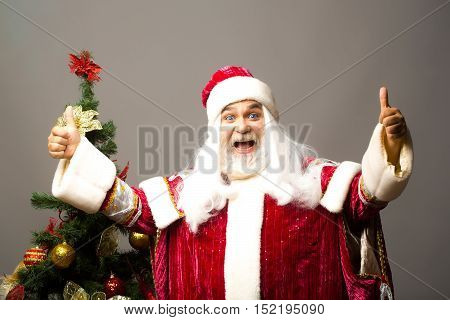 Happy santa claus man with white beard and hair in new year red suit gives double thumbs up gesture near Christmas tree