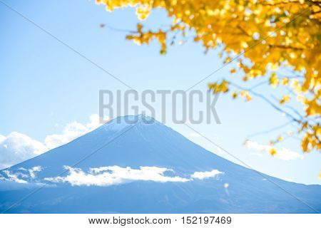 Fuji Mountain and blurred yellow maple leaves in Autumn season of Lake Kawaguchi Yamanashi Japan