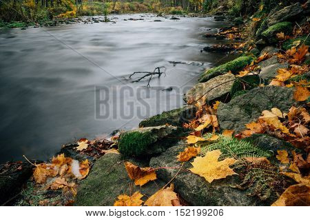 Closeup on colorful and stony riverside by autumn long exposure image