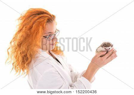 Veterinarian With Hedgehog