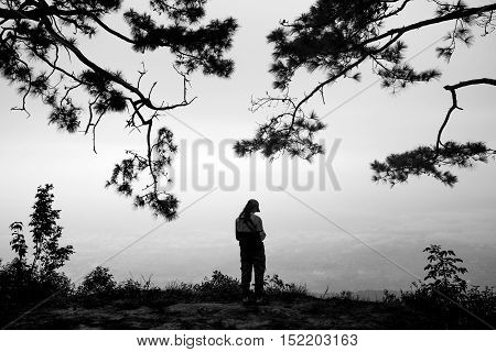 Lonely woman traveler standing alone in pine forest on the top of mountain and looking at scenery view in the mist