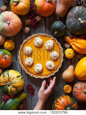 Festive homemade pumpkin pie with whipped cream made for Thanksgiving, Halloween. Top view. Autumn creative Decoration