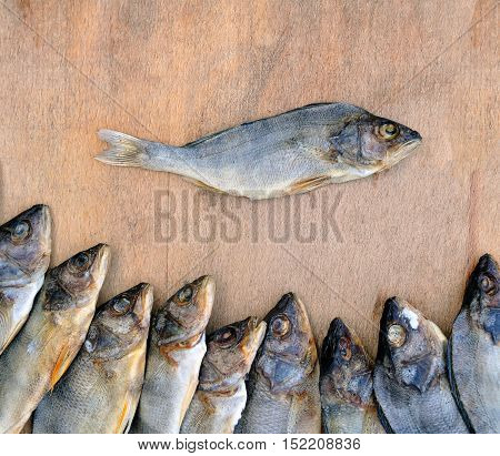 Many dried perch on a wooden background. One fish separated. River fish closeup.