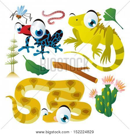 cute vector cartoon reptile collection. colorful illustrations of tree frog, iguana lizard, boa snake