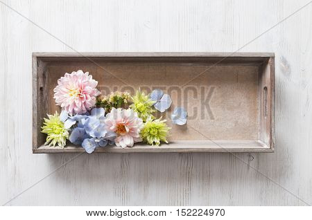 Hydrangea and Dahlia, wood box with garden flowers bouquet on white table