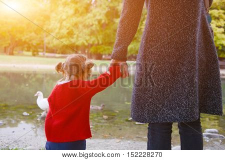 Young Baby Walking Hand In Hand With Her Mother In The Park