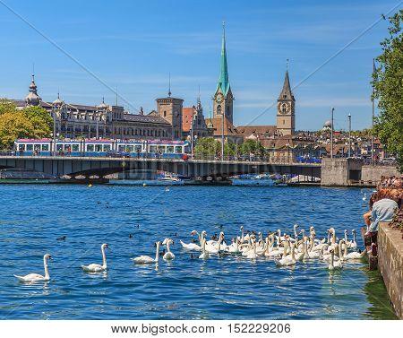 Zurich, Switzerland - 3 July, 2014: swans and people on Lake Zurich, the city of Zurich in the background. Lake Zurich is a lake in Switzerland, extending southeast of the city of Zurich, which is the largest city in Switzerland.