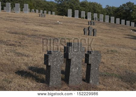 grave crosses on a hillside in the park