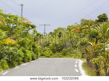 The Easo village road on Lifou island (New Caledonia).