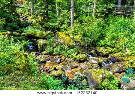 The Gutach river at the foot of Triberg Falls in Germany, Baden-Wurttemberg