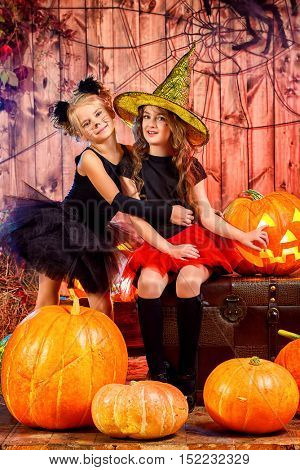 Two cute little girl in halloween costumes posing together in a wooden barn with pumpkins. Halloween party.