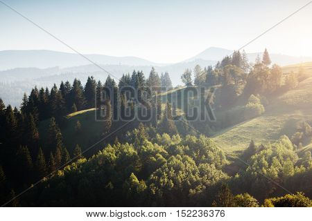 Great view of alpine village glowing by sunlight. Picturesque and gorgeous morning scene. Popular tourist attraction. Location place Carpathian, Ukraine, Europe. Artistic picture. Beauty world.