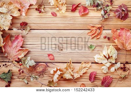 Autumn dry leaves on a wooden background