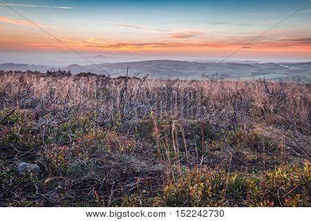 Colorful Sunrise Clouds over Autumnal Meadow with Dried Grass and Burnt Heather Branches