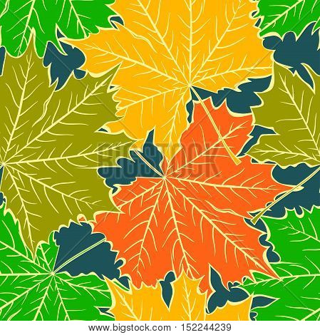 seamless pattern of bright multi-colored maple leaves with veins on a blue background