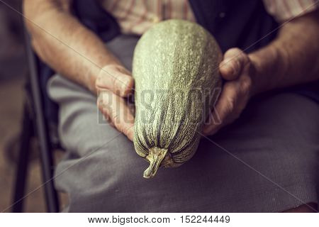An elderly woman holding a ripe courgette grown in her garden. Selective focus
