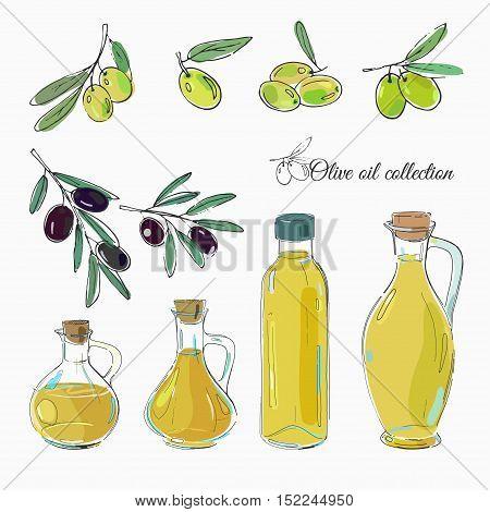 set of black and green olives and bottles of olive oil, freehand vector illustration