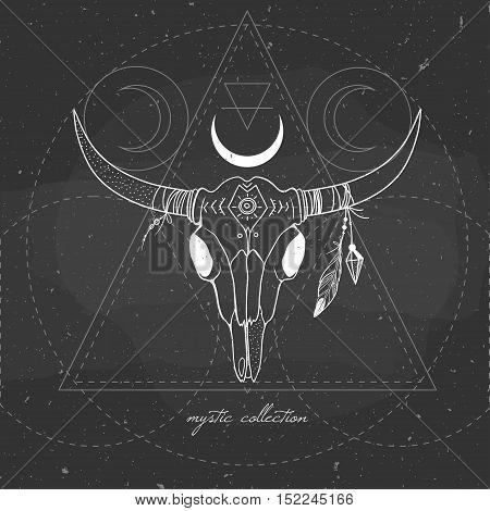 vector illustration with buffalo skull on a chalkboard, mystical illustration with bull skull, cow's skull on blackboard, boho style