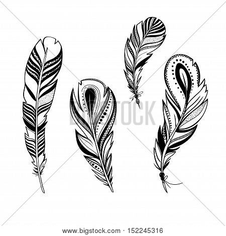 vector ornamental feathers, set of decorative bird feathers isolated on white, black and white illustration with boho style feathers