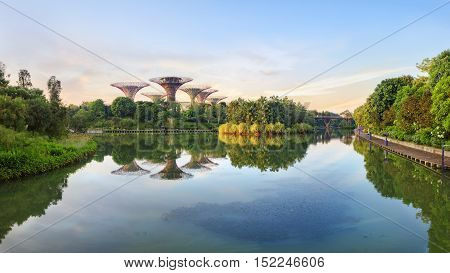 Singapore, Republic of Singapore - May 5, 2016: panorama of Supertree grove at Gardens by the Bay reflecting in pond at sunrise