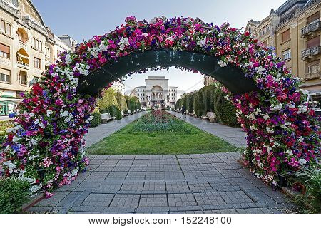 TIMISOARA; ROMANIA - APRIL 23; 2016: Floral arrangements in Victory Square; with Opera building in background.