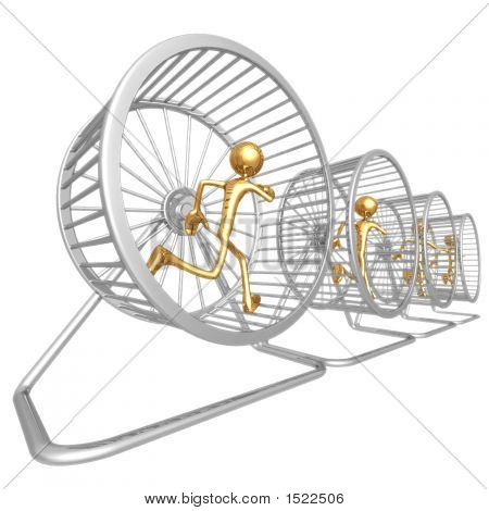 Hamster Wheel Runners