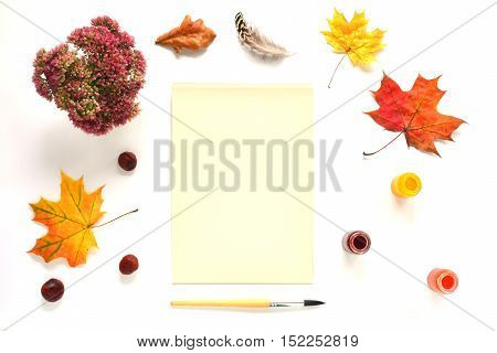Composition with paper, chestnuts, flowers and autumn leaves. Top view on white background. Autumn flat lay. Mock up for art work