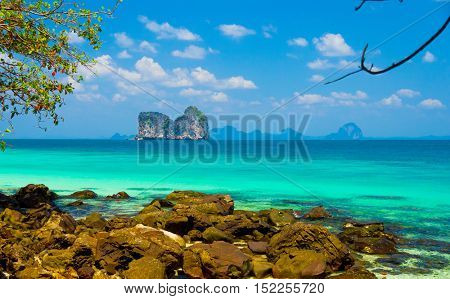 Green Fantasy Jungle Lagoon