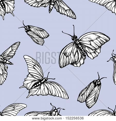 Vector seamless pattern with butterflies. Stylish graphic texture. Repeating print on pastel blue background.