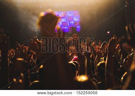 Raising Their Hands