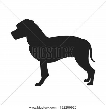 American staffordshire terrier black silhouette. Pretty pedigree dog, vector illustration