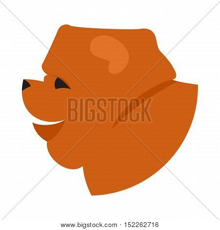 Dog head chow-chow. Companion doggy pedigree, vector illustration