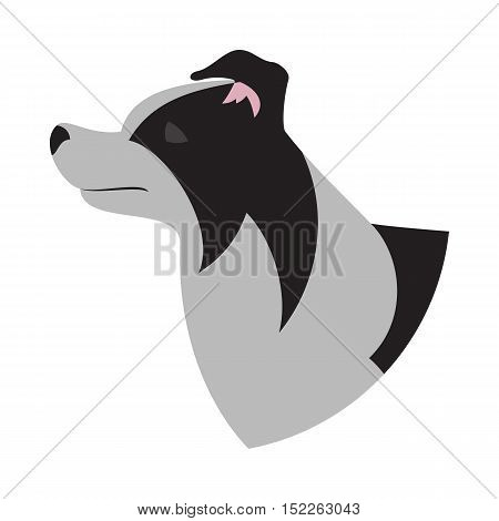 Dog head border collie. Purebred animal domestic isolated on white background. Vector illustration