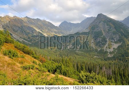 Beautiful mountain landscape. Mountain peaks in summer scenery.