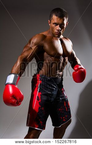 Boxer In Rack Ready For Battle