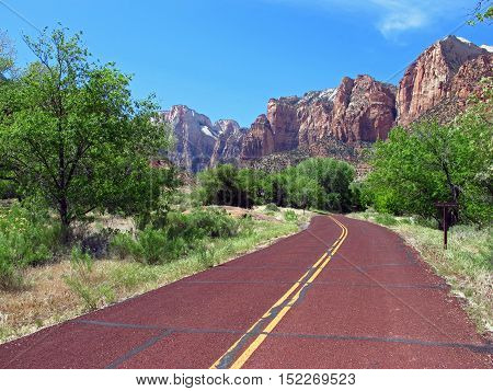 A road lined mountains and trees through the Zion Park in Utah, USA. Natural colors and light.