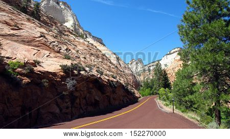 A road lined mountains and preserved nature through the Zion Park in Utah, USA.
