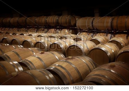 Wine cellar in warm ambiance. Rows of wooden wine barrels at a winery.