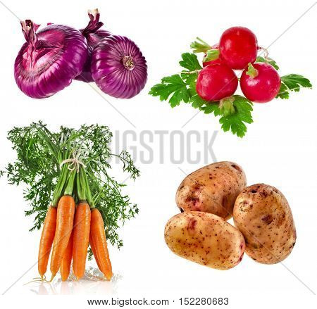 Collection set of Various Fresh Ripe Vegetables close up sign objects, isolated on white background