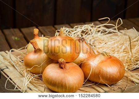 French yellow sweet onion on wooden box